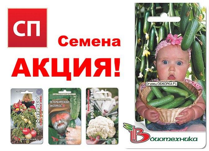 Акция для организаторов СП, семена Биотехника от производителя. Vr-0Sg8DyQM