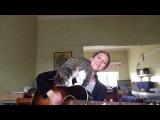 'Loverless' feat. George the cat - Ayleen O'Hanlon девушка с гитарой и кот кошка поет