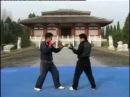 学习散打/散手- 散打教程/教学 2- Sanshou Tutorial 2 Chinese Language.