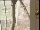 Маньяк выеб в селе связанную шлюху и кончил в рот - Ребека Лорд 720,Ретро, Домашнее порно, Anal, Минет, На публике