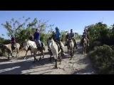 Доминикана, краткий обзор нашей экскурсии ВДВ, часть 1, серия 99