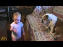 Baby Makes a Valid Argument AFV