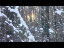 Белым снегом Ночь метельная ту стежку замела По которой по которой Я с тобой люб ...