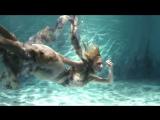 Underwater fashion show