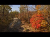 Золотая осень на Земле Леопарда Golden autumn on the land of leopard