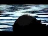 LOCUST REVIVAL - Old Love (music video)