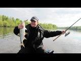 БАЗА ОТДЫХА ВИЗ ВОЛГОГРАД-Волго-Ахтубинская пойма рыбалка лес зимние дома