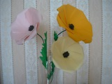 Цветок из бумаги своими руками Мак Paper Poppy Flower