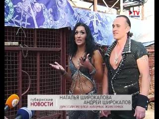 Две сотни животных и две тысячи костюмов  в Воронежском цирке представили новое грандиозное шоу Баронеты