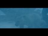 Полуночное солнце  Midnight Sun  ЛД  2014  DVDRip