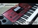 Обзор синтезатора Casio CTK-6250 и CTK-6200 от Pianino.by