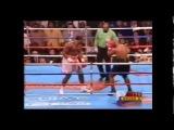 Lennox Lewis vs Mike Tyson vine