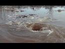 Amazing monstrous whirlpool Чудовищный водоворот Dvietes atvars Torbellino Tourbillon
