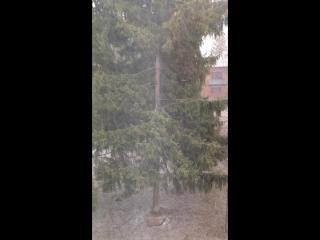 20 апреля Тула, нормальная погода в средней полосе России