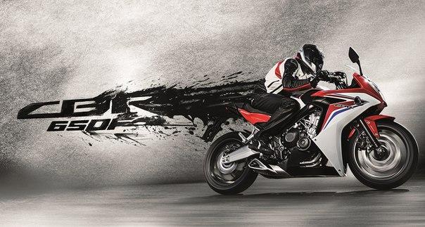 Motor monster каталог мотоциклов чоппер
