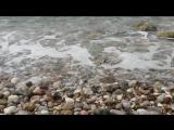 Море Черногории