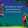 ♪ Серенада на заказ ♪ Минск