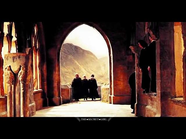 Harry Potter The Marauders | High Hopes