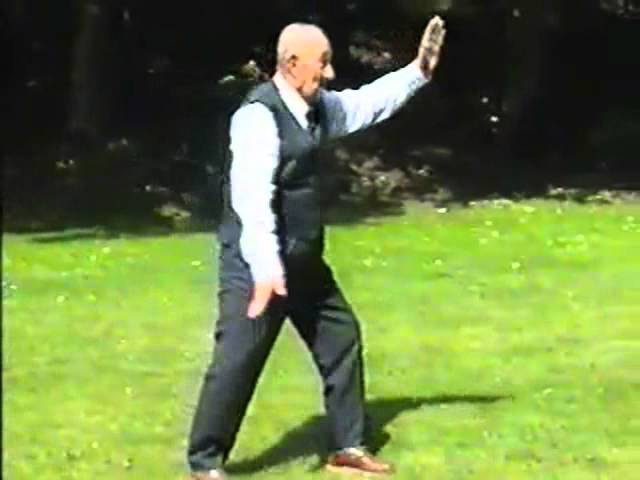 Wu style Tai Chi Fast Form Slow Form