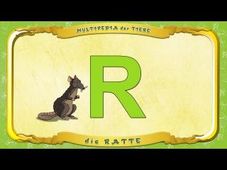 Ratte Ratt Sony Mtv 1988 Tv 2 Ratt Lay It Down Hd