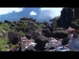 Balligomingo - Purify - Video