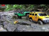 Внедорожники 4х4 по бездорожью и грязи, радиоуправляемые машины