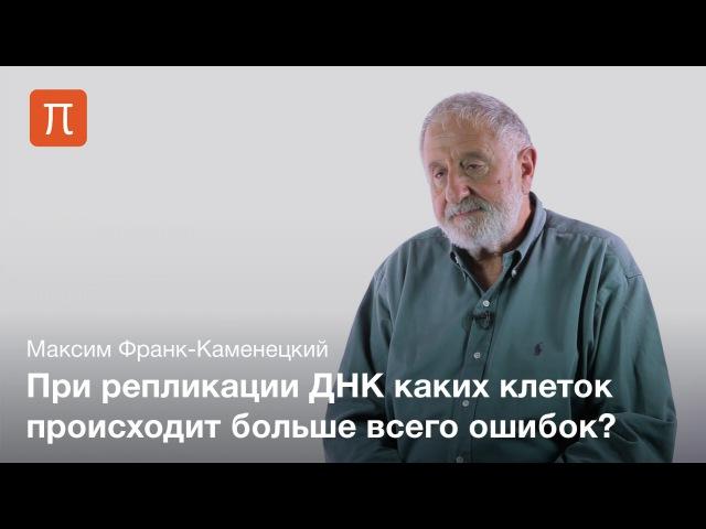 Повреждения ДНК — Максим Франк-Каменецкий