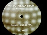 Cajmere feat. Terence FM - Feelin Kinda High (Mix 1)