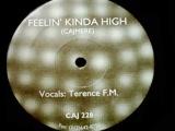 Cajmere feat. Terence FM - Feelin Kinda High (Mix 1)