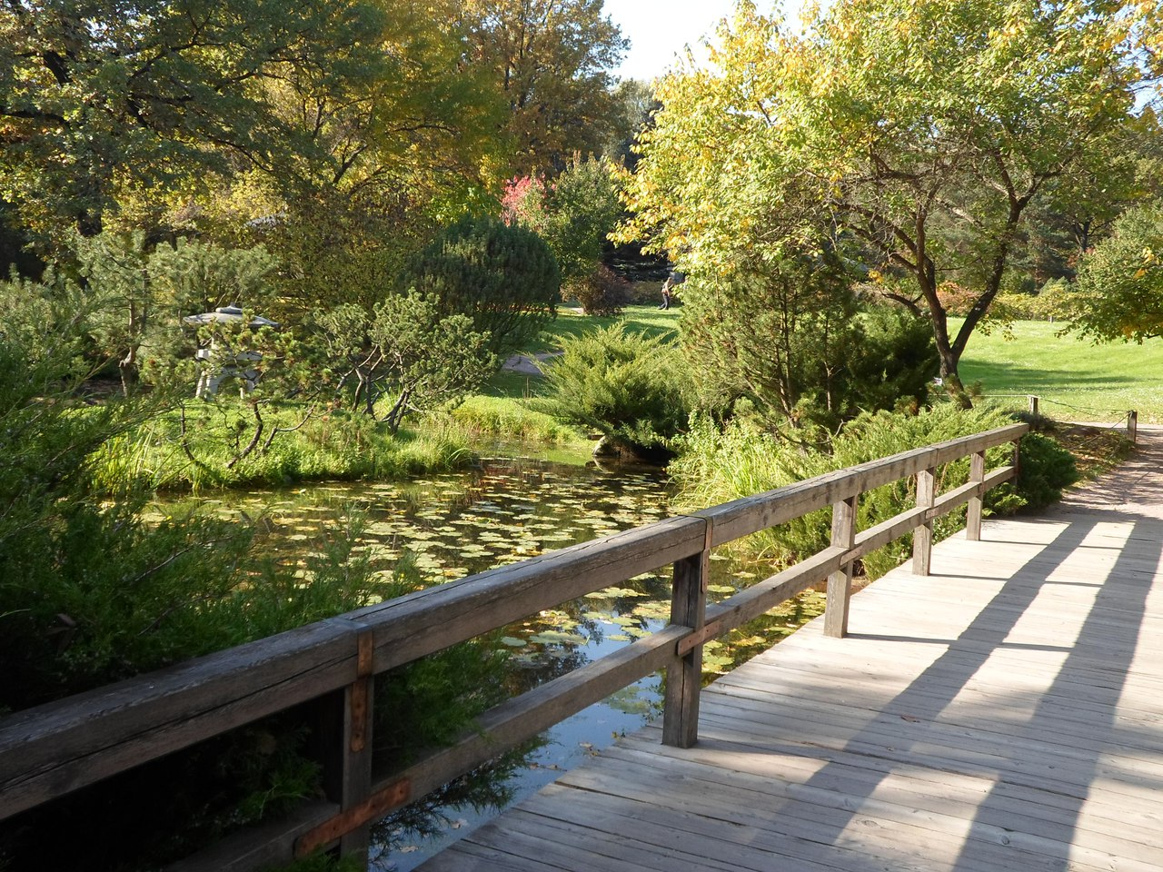 Японский сад москва 17 фотография