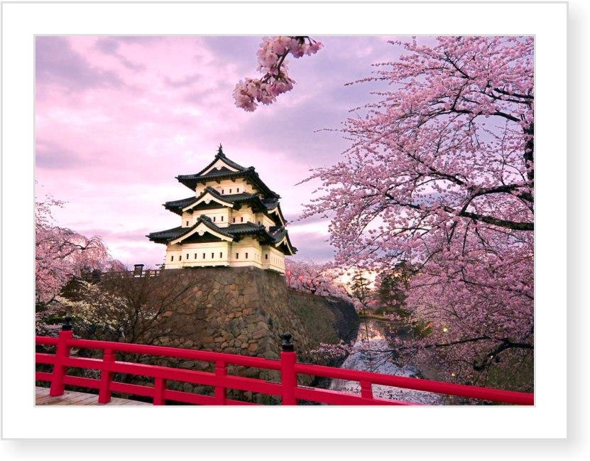 Сучасна японська екологічна свідомість