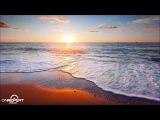 Gareth Emery ft. Gavin Beach Eye of the Storm (Moonnight Remix)