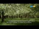казакша сериал 2015 Томпақ - [2 маусым] - «Сенсация» - 6 бөлім