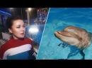 Анастасия Заворотнюк рассказала, как дельфины смеются, передразнивают и удивляют людей