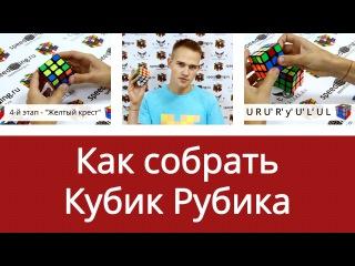 Как собрать кубик Рубика 3х3х3 для начинающих от Дмитрия Добрякова