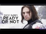 Bucky Barnes Ready Or Not