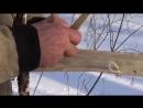 Тайга моя заветная. Николай Абоимов. Эвенкийский самострел для охоты.