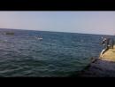 Пляж парка Победы