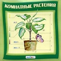 Cd-rom. комнатные растения, МедиаАрт