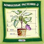 Cd-rom. комнатные растения 2, МедиаАрт