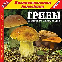 Cd-rom. грибы, 1С