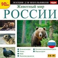 Cd-rom (mp3). аудиокурсы для школьников. животный мир россии, 1С