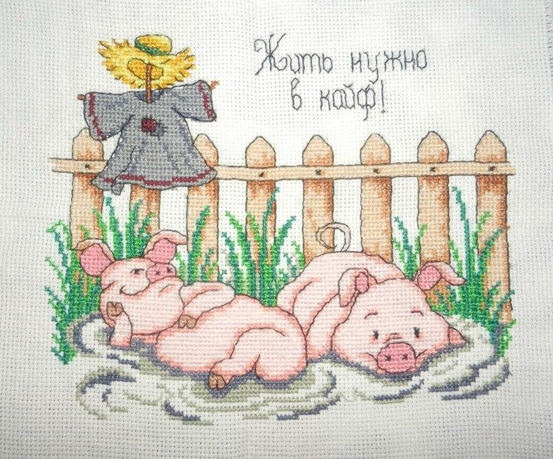 Віталій Попель | Славута