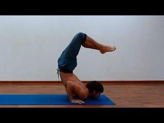 Подготовка к позе скорпиона (вришчикасане) | асаны йоги |