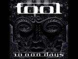 Tool-Vicarious