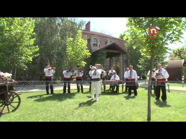 Sergiu Tiron şi orchestra condusă de Viorel Gribincea - La horă-n sat