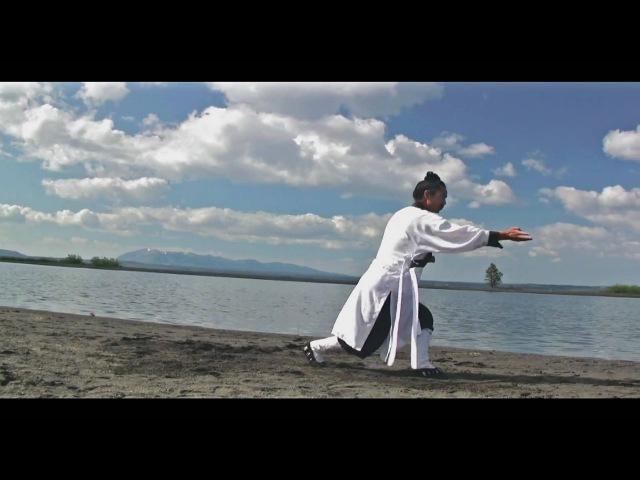 Wudang Kung Fu 武当太乙五行拳 Wudang Taiyi Five Element Form
