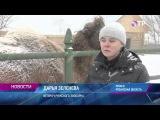 Малые города России: Ряжск - здесь выпускают почтовые конверты и открыт частный бесплатный зоопарк
