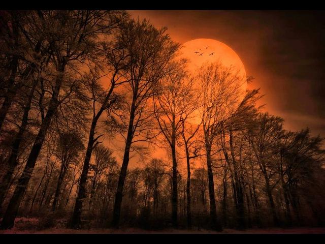 Klaus Schulze - The Theme: The Rhodes Elegy [HQ]