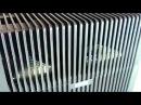 Лучший ПРИБОР для Очистки Мойки воздуха Venta LW25 и Venta LW15